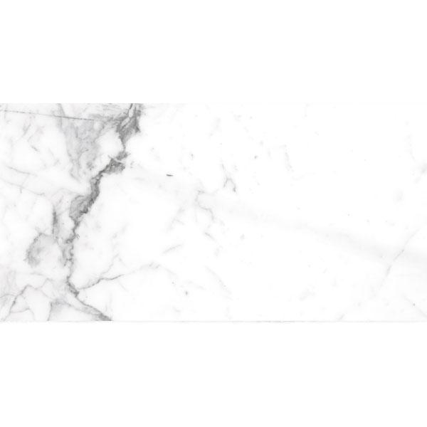 BIANCHEZZA ARABESCATO LUC 60X120cm. GT743983